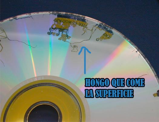 hongo-cd